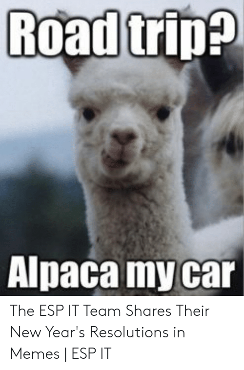 New Years Resolution Meme: Alpaca my car The ESP IT Team Shares Their New Year's Resolutions in Memes | ESP IT