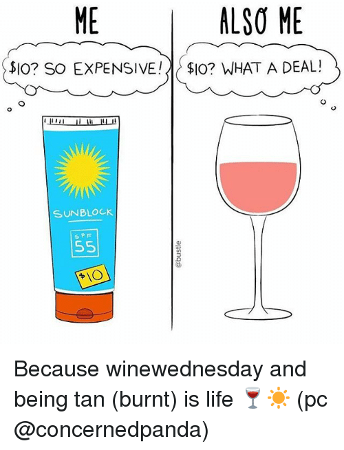Life, Memes, and 🤖: ALSO ME  SIO? So EXPENSIVE!  $IO? WHAT A DEAL!  SUNBLOCK  55 Because winewednesday and being tan (burnt) is life 🍷☀️ (pc @concernedpanda)