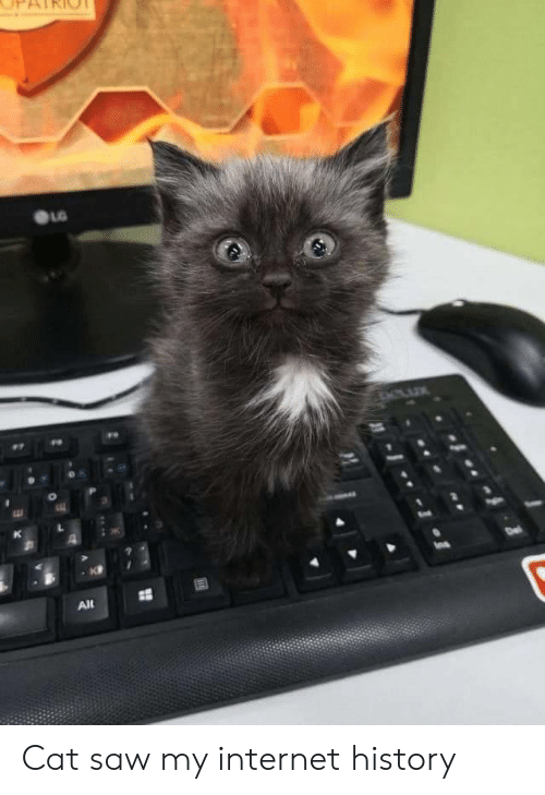 Internet, Saw, and History: Alt Cat saw my internet history