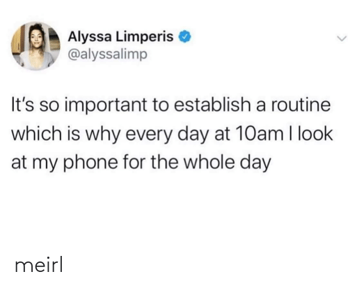 my phone: Alyssa Limperis  @alyssalimp  It's so important to establish a routine  which is why every day at 10am I look  at my phone for the whole day meirl