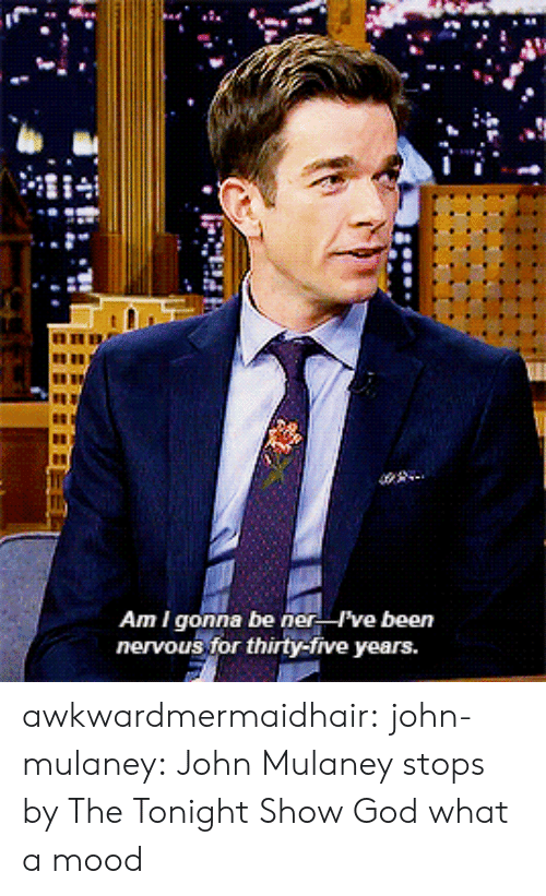 God, Mood, and Target: Am I gonna be ner ve been  nervous for thirty-five years. awkwardmermaidhair: john-mulaney: John Mulaney stops by The Tonight Show  God what a mood