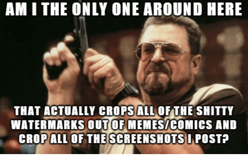 Memes Comics: AM I THE ONLY ONE AROUND HERE  THAT ACTUALLY CROPSALL OF THE SHITTY  WATER MARKS OUT OF MEMES/coMICS AND  CROPALL OF THE SCREENSHOTS IPOSTA