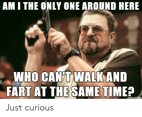 Am I the Only One: AM I THE ONLY ONE AROUND HERE  WHO CAN T WALK AND  FART AT THE SAME TIME?  made on imgur Just curious