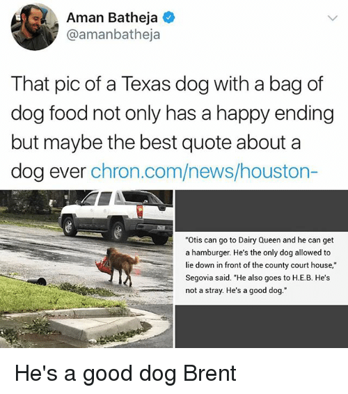 """courting: Aman Batheja  @amanbatheja  That pic of a Texas dog with a bag of  dog food not only has a happy ending  but maybe the best quote about a  dog ever chron.com/news/houston-  """"Otis can go to Dairy Queen and he can get  a hamburger. He's the only dog allowed to  lie down in front of the county court house,""""  Segovia said. """"He also goes to H.E.B. He's  not a stray. He's a good dog."""" He's a good dog Brent"""