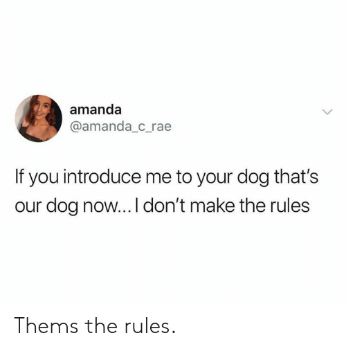Dank, 🤖, and Dog: amanda  @amanda_c_rae  If you introduce me to your dog that's  our dog now...I don't make the rules Thems the rules.