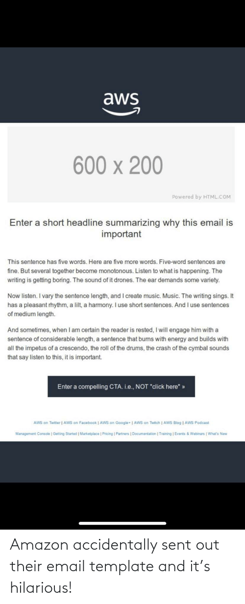 Email: Amazon accidentally sent out their email template and it's hilarious!
