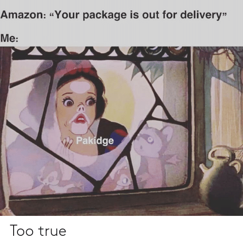 """delivery: Amazon: """"Your package is out for delivery""""  Me:  Pakidge Too true"""