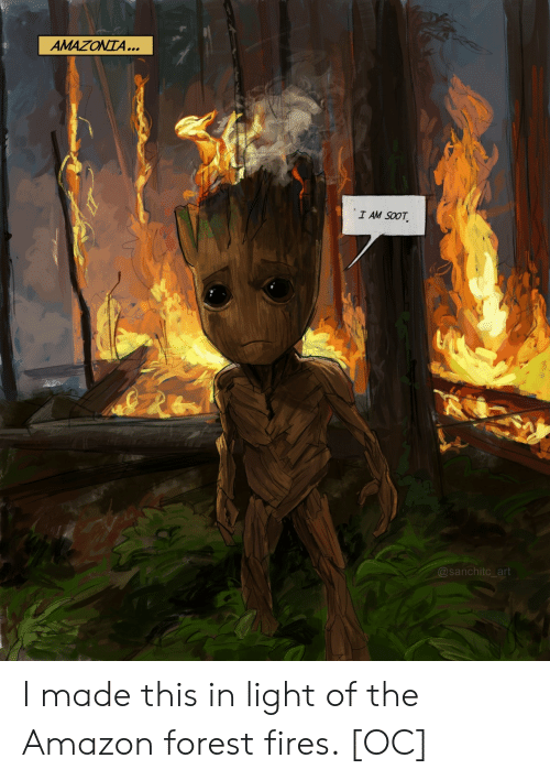 amazon forest: AMAZONTA...  I AM SOOT  @sanchitc_art I made this in light of the Amazon forest fires. [OC]