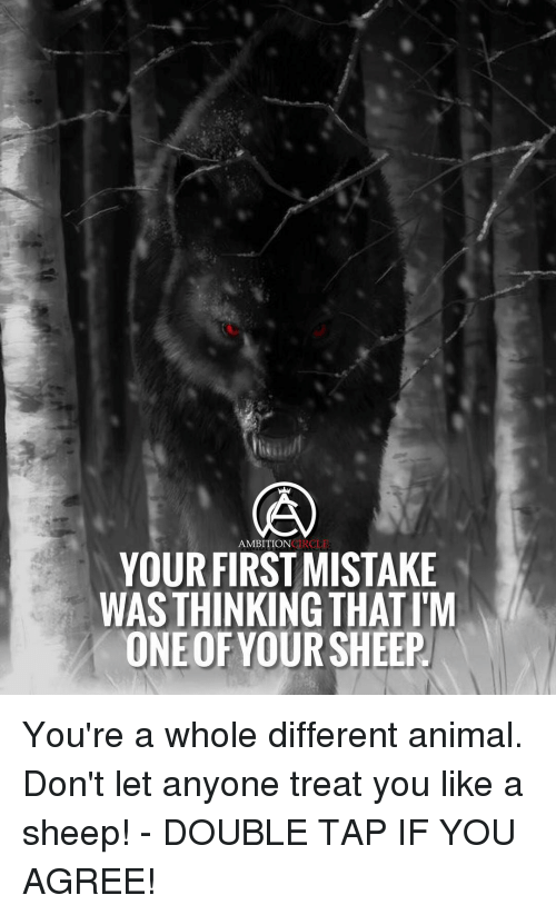 Memes, Heroes, and Ambition: AMBITION  HERO LE  YOUR FIRST MISTAKE  WAS THINKING THATIM  ONEOF YOUR SHEEP You're a whole different animal. Don't let anyone treat you like a sheep! - DOUBLE TAP IF YOU AGREE!