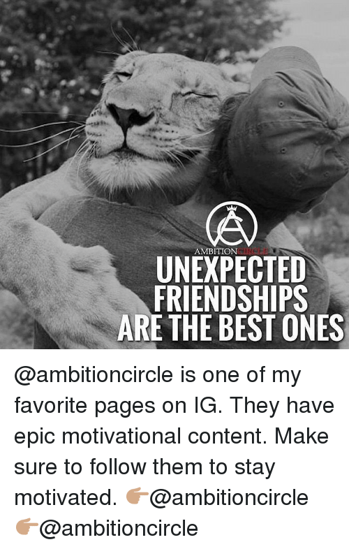 Motivationals: AMBITION  UNEXPECTED  FRIENDSHIPS  ARE THE BEST ONES @ambitioncircle is one of my favorite pages on IG. They have epic motivational content. Make sure to follow them to stay motivated. 👉🏽@ambitioncircle 👉🏽@ambitioncircle