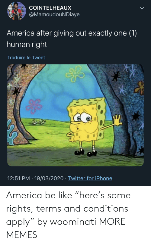 "Rights: America be like ""here's some rights, terms and conditions apply"" by woominati MORE MEMES"