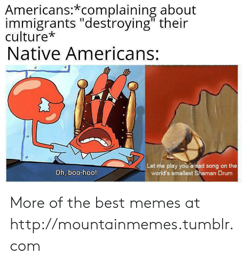 "Boo, Memes, and Tumblr: Americans:*complaining about  immigrants ""destroying"" their  culture*  Native Americans:  Let me play you a sad song on the  world's smallest Shaman Drum  Oh, boo-hoo! More of the best memes at http://mountainmemes.tumblr.com"