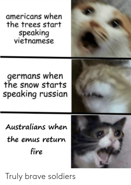 Fire, Soldiers, and Brave: americans when  the trees start  speaking  vietnamese  germans when  the snow starts  speaking russian  Australians when  the emus return  fire Truly brave soldiers