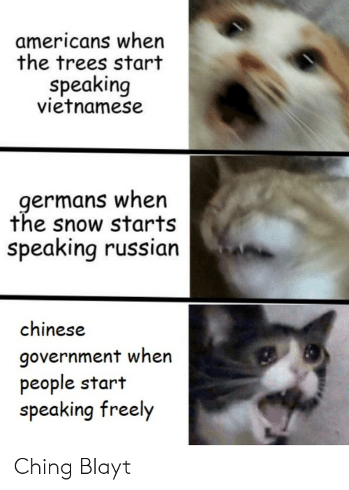 Chinese, Snow, and Trees: americans when  the trees start  speaking  vietnamese  germans when  the snow starts  speaking russian  chinese  government when  people start  speaking freely Ching Blayt