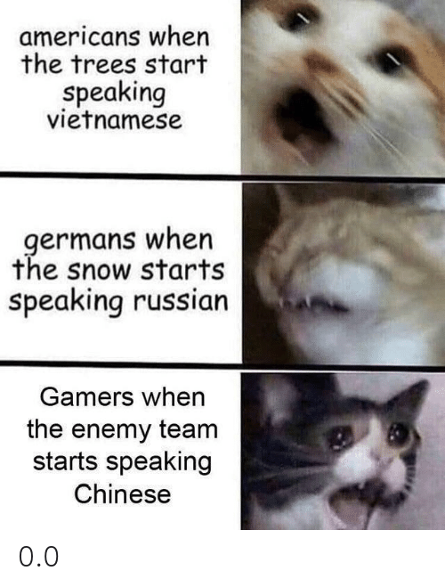 Chinese, Snow, and Trees: americans when  the trees start  speaking  vietnamese  germans when  the snow starts  speaking russian  Gamers when  the enemy team  starts speaking  Chinese 0.0