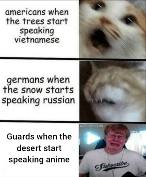 Vietnamese: americans when  the trees start  speaking  vietnamese  germans when  the snow starts  speaking russian  u/ManiacNikk  Guards when the  desert start  speaking anime  TFiurseribe