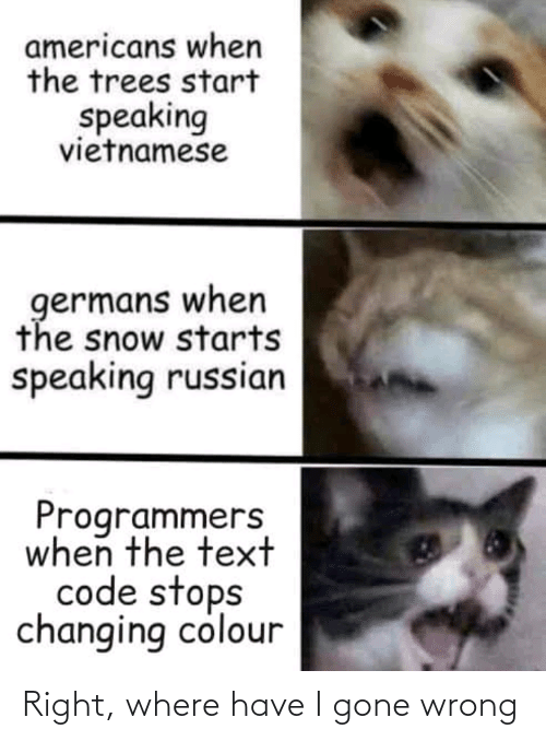 Vietnamese: americans when  the trees start  speaking  vietnamese  germans when  the snow starts  speaking russian  Programmers  when the text  code stops  changing colour Right, where have I gone wrong