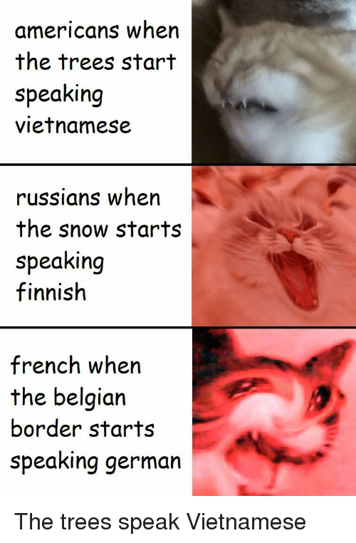Snow, Trees, and Belgian: americans when  the trees start  speaking  vietnamese  russians when  the snow starts  speaking  finnish  french when  the belgian  border starts  speaking germarn The trees speak Vietnamese