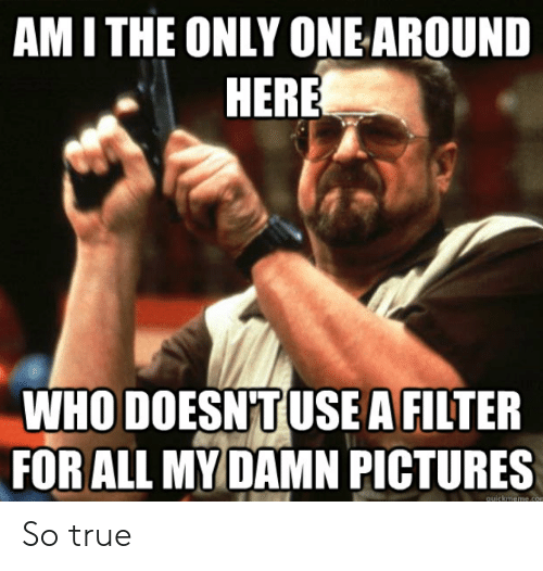 quickmeme: AMI THE ONLY ONEAROUND  HERE  WHO DOESNTUSEA FILTER  FOR ALL MYDAMN PICTURES  quickmeme.con So true