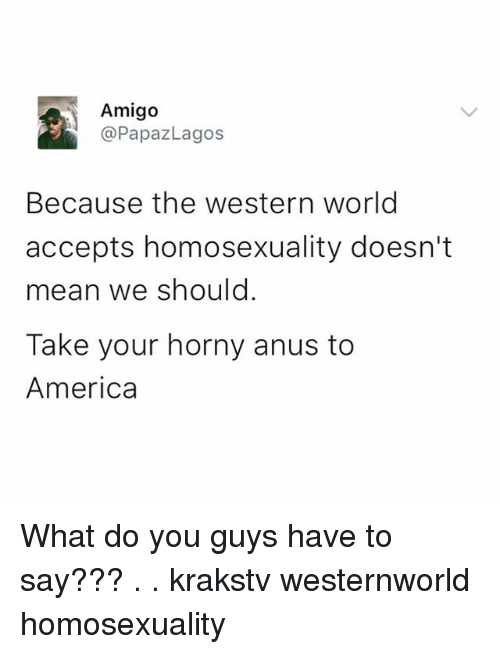 America, Horny, and Memes: Amigo  @PapazLagos  Because the western world  accepts homosexuality doesn't  mean we should  Take your horny anus to  America What do you guys have to say??? . . krakstv westernworld homosexuality