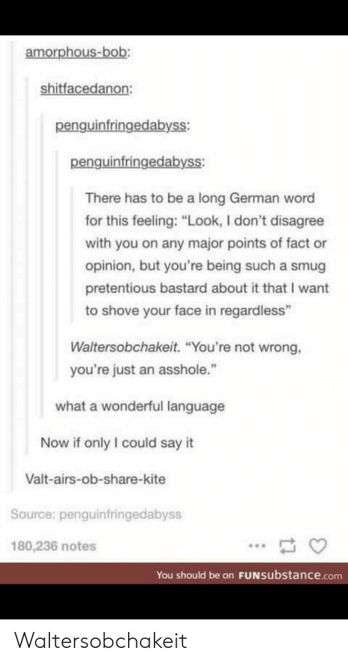 "Pretentious, Say It, and Word: amorphous-bob:  shitfacedanon:  penguinfringedabyss:  penguinfringedabyss:  There has to be a long German word  for this feeling: ""Look, I don't disagree  with you on any major points of fact or  opinion, but you're being such a smug  pretentious bastard about it that I want  to shove your face in regardless""  Waltersobchakeit. ""You're not wrong,  you're just an asshole.""  what a wonderful language  Now if only I could say it  Valt-airs-ob-share-kite  Source: penguinfringedabyss  180,236 notes  You should be on FUNsubstance.conm Waltersobchakeit"