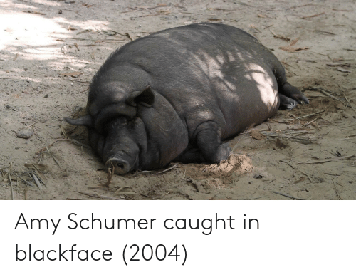 Amy Schumer: Amy Schumer caught in blackface (2004)