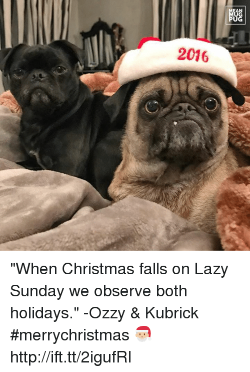 "Ozzies: AN  2016  NGG  阳 ""When Christmas falls on Lazy Sunday we observe both holidays."" -Ozzy & Kubrick #merrychristmas 🎅🏼 http://ift.tt/2igufRI"