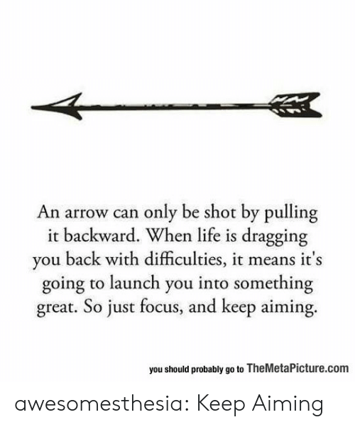 themetapicture: An arrow can only be shot by pulling  it backward. When life is dragging  you back with difficulties, it means it's  going to launch you into something  great. So just focus, and keep aiming.  you should probably go to TheMetaPicture.com awesomesthesia:  Keep Aiming