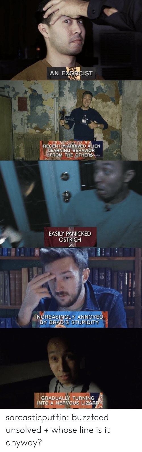 whose line is it anyway: AN EXORCIST   RECENTLY ARRIVED ALIEN  LEARNING BEHAVIOR  FROM THE OTHERS mily   EASILY PANICKED  OSTRICH   INCREASINGLY ANNOYED  BY BRAD'S STUPIDITY   GRADUALLY TURNING  INTO A NERVOUS LIZAR sarcasticpuffin: buzzfeed unsolved + whose line is it anyway?