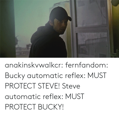 Fake, Target, and True: anakinskvwalkcr:  fernfandom:  Bucky automatic reflex: MUST PROTECT STEVE! Steve automatic reflex: MUST PROTECT BUCKY!