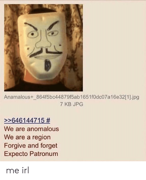 Irl, Me IRL, and Jpg: Anamalous+_864f5bc44879f5ab1651f0dc07a16e32[1].jpg  7 KB JPG  >>646144715 #  We are anomalous  We are a region  Forgive and forget  Expecto Patronum me irl
