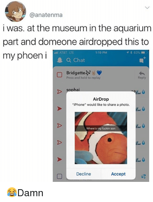 "Iphone, Memes, and Aquarium: @anatenma  i was. at the museum in the aquarium  part and domeone airdropped this to  my phoeni  AT&T LTE  1:19 PM  イ* 63% ..  Chat  Bridgette  Press and hold to replay  Reply  sophai  AirDrop  ""iPhone"" would like to share a photo.  Where's my fuckin son  Decline  Accept 😂Damn"