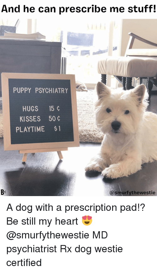 Playtime: And he can prescribe me stuff!  PUPPY PSYCHIATRY  HUGS 15 ¢  KISSES 50  PLAYTIME $  @smurfythewestie A dog with a prescription pad!? Be still my heart 😍 @smurfythewestie MD psychiatrist Rx dog westie certified
