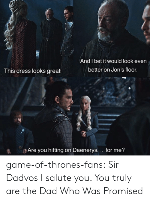 Salute You: And I bet it would look even  better on Jon's floor  This dress looks great:  MOinco ecigotquote  t Are you hitting on Daenerys.. for me? game-of-thrones-fans:  Sir Dadvos I salute you. You truly are the Dad Who Was Promised
