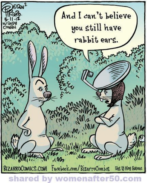 Facebook, Memes, and facebook.com: And I can't believe  you still have  511-12  W/aNDY  coWaN  * rabbit ears.  zi  BIZARROCOMICS.COM Facebook.com/BizarroComids Kn ates  shared by womenafter50.com