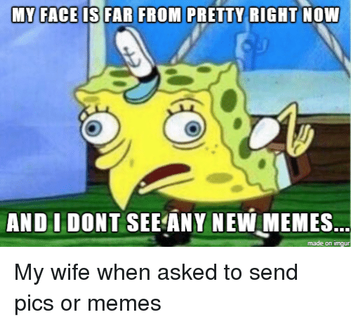 Memes, Wife, and Pics: AND I DONT SEE ANY NEW MEMES  made on imgu My wife when asked to send pics or memes