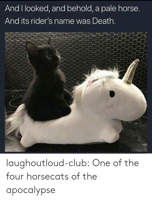apocalypse: And I looked, and behold, a pale horse.  And its rider's name was Death. laughoutloud-club:  One of the four horsecats of the apocalypse