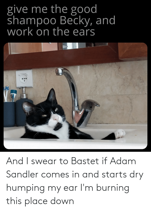 Adam Sandler: And I swear to Bastet if Adam Sandler comes in and starts dry humping my ear I'm burning this place down