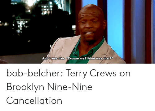 "Nine Nine: And I was like, ""Excuse me? What was that? bob-belcher:  Terry Crews on Brooklyn Nine-Nine Cancellation"
