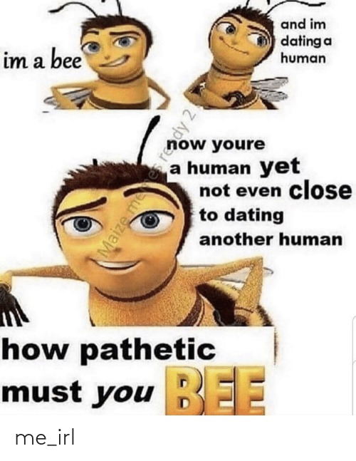 Im A: and im  dating a  human  im a bee  now youre  a human yet  not even close  to dating  another human  how pathetic  BEE  must you EE  Maize mees reddy 2! me_irl