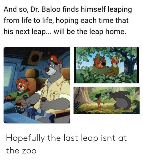 leap: And so, Dr. Baloo finds himself leaping  from life to life, hoping each time that  his next leap... will be the leap home. Hopefully the last leap isnt at the zoo