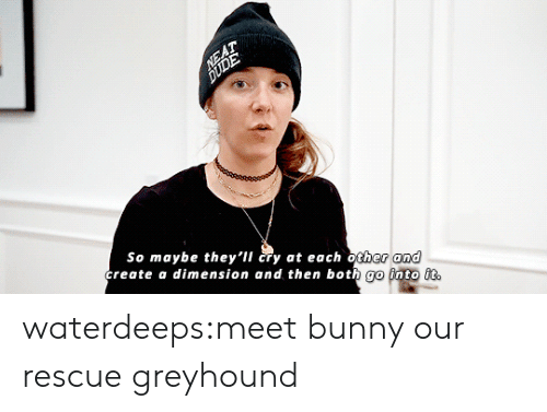 Tumblr, youtube.com, and Blog: and  So maybe they'il cry at each other  create a dimension and then both go into it waterdeeps:meet bunny our rescue greyhound