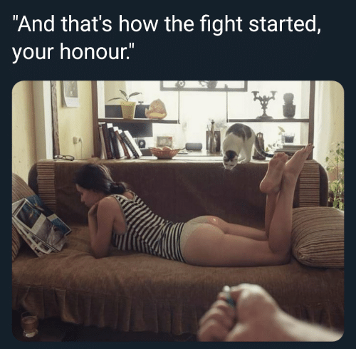 """Honour: """"And that's how the fight started,  your honour."""""""