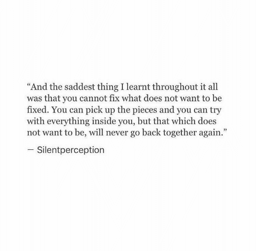 """What Does, Never, and Back: """"And the saddest thing I learnt throughout it all  was that you cannot fix what does not want to be  fixed. You can pick up the pieces and you can try  with everything inside you, but that which does  not want to be, will never go back together again.""""  - Silentperception"""