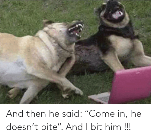 "and then: And then he said: ""Come in, he doesn't bite"". And I bit him !!!"