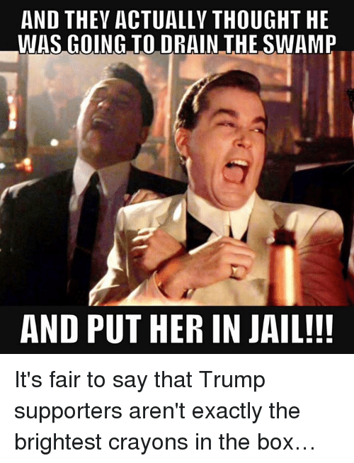 drain-the-swamp: AND THEY ACTUALLY THOUGHT HE  WAS GOING TO DRAIN THE SWAMP  AND PUT HER IN JAIL!!! It's fair to say that Trump supporters aren't exactly the brightest crayons in the box…