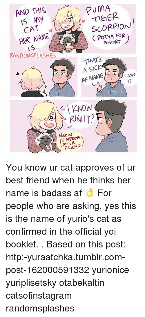 Af, Best Friend, and Memes: AND THIS  PUMA  NY  SCORPION  CAT  HER NAME  A FOR  SHORT  IS.  RANDDMSPLASHES  THAT's  A SICK  AFNAME  KNOW  RIGHT?  T APPROVE  FRIEND You know ur cat approves of ur best friend when he thinks her name is badass af 👌 For people who are asking, yes this is the name of yurio's cat as confirmed in the official yoi booklet. . Based on this post: http:-yuraatchka.tumblr.com-post-162000591332 yurionice yuriplisetsky otabekaltin catsofinstagram randomsplashes