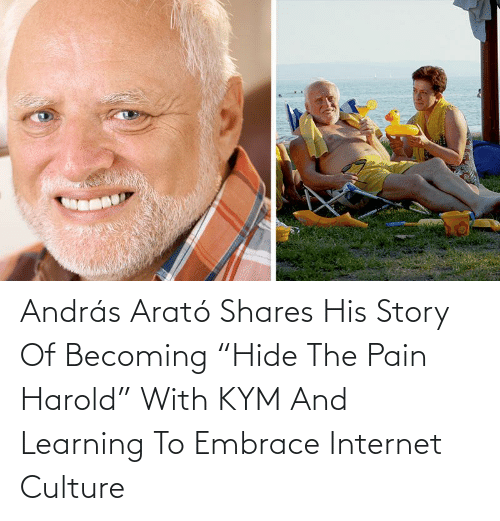 "Internet: András Arató Shares His Story Of Becoming ""Hide The Pain Harold"" With KYM And Learning To Embrace Internet Culture"