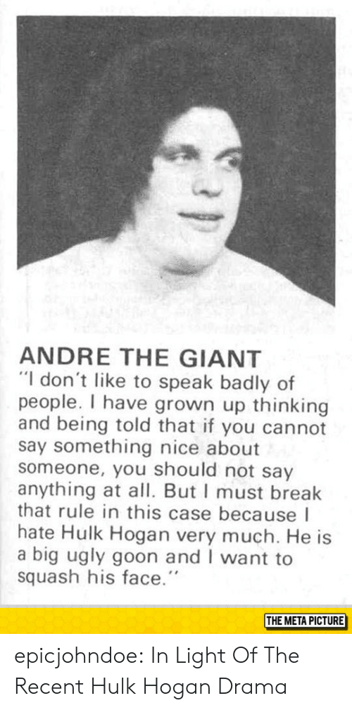 """Hulk Hogan: ANDRE THE GIANT  """"I don't like to speak badly of  people. I have grown up thinking  and being told that if you cannot  say something nice about  someone, you should not say  anything at all. But I must break  that rule in this case because I  hate Hulk Hogan very much. He is  a big ugly goon and I want to  squash his face.""""  THE META PICTURE epicjohndoe:  In Light Of The Recent Hulk Hogan Drama"""