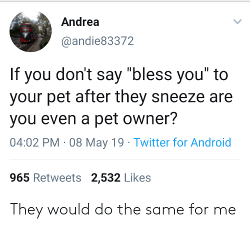 "Andrea: Andrea  @andie83372  If you don't say ""bless you"" to  your pet after they sneeze are  you even a pet owner?  04:02 PM 08 May 19 Twitter for Android  965 Retweets 2,532 Likes They would do the same for me"